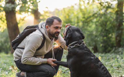 Le comportementaliste canin